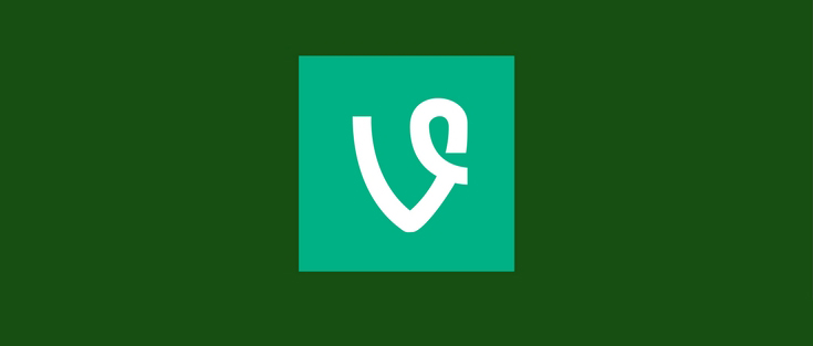 Business Lessons from Vine Shutting Down